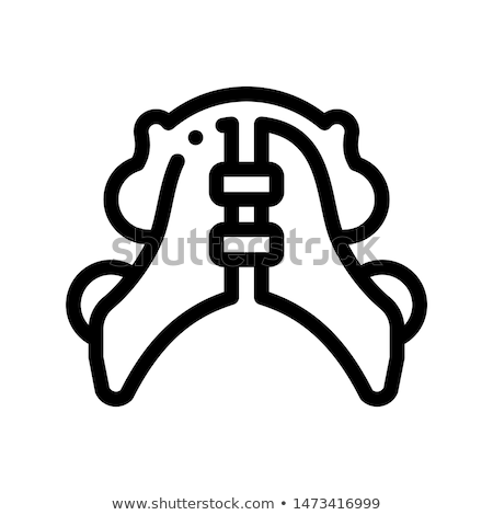 Dental Plate Stomatology Vector Thin Line Icon Stock photo © pikepicture