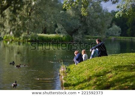 Сток-фото: парка · пруд · пирс · металл · древесины · небольшой