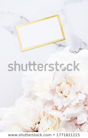 Pompás névjegy meghívó vázlat virágcsokor virágok Stock fotó © Anneleven