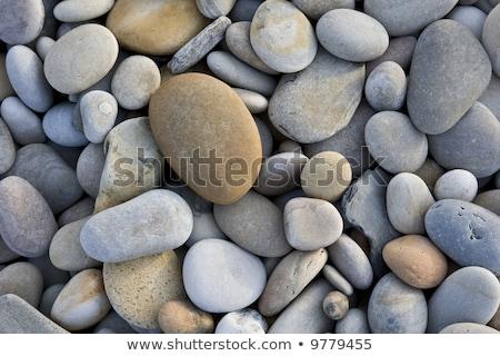 Foto stock: Pedras · natureza · jardim · fundo · rocha · branco