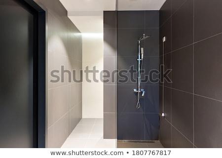 Shower cabin Stock photo © Novic