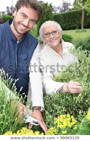 joven · jardinería · mayor · mujer · flores · hombre - foto stock © photography33