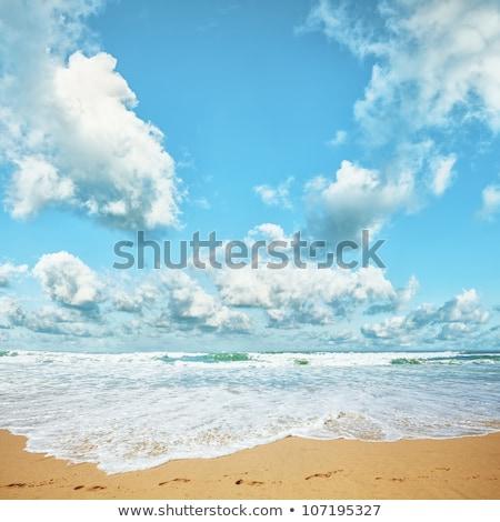 Trópusi tengerpart napos idő tér hdr fa tájkép Stock fotó © moses