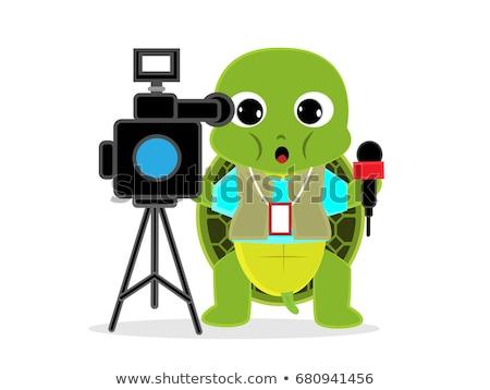 Vicces teknős kareraman rajzfilmfigura izolált fehér Stock fotó © RAStudio