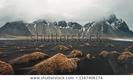 農村 · アイスランド · 風景 · 山 · 湖 · 動物 - ストックフォト © hofmeester
