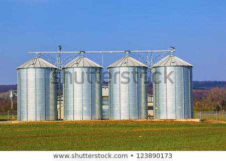 négy · ezüst · mező · aratás · kék · ég · felhők - stock fotó © meinzahn