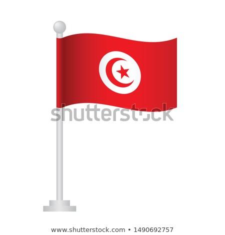 Tunísia pequeno bandeira mapa foco fundo Foto stock © tashatuvango