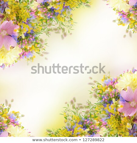beautiful bride with bouquet of flowers over summer background stock photo © amok