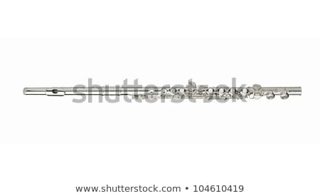 Silver Flute Stock photo © ddvs71