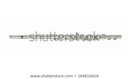 Argent flûte mensonges noir cas musique Photo stock © ddvs71