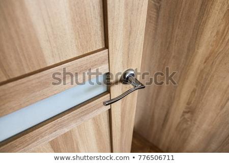 フロントドア · プラハ · チェコ共和国 · 木材 · 市 · ドア - ストックフォト © alexandre_zveiger