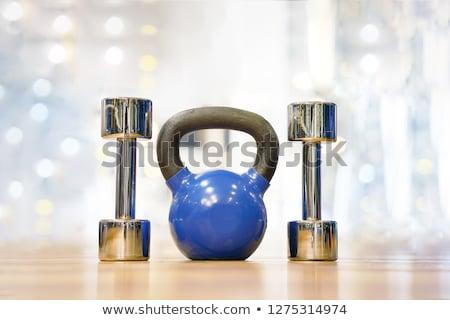 Fitness halteres azul bola isolado branco Foto stock © tetkoren