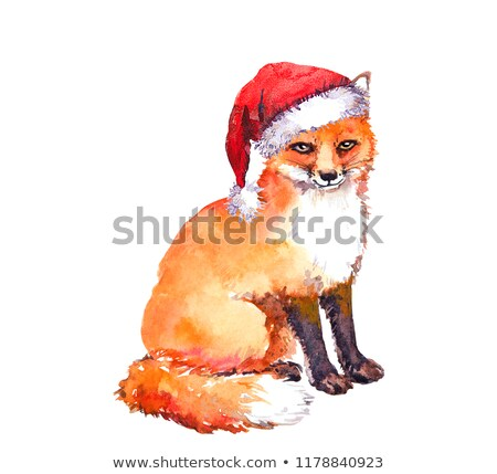 red fox with Christmas hat Stock photo © adrenalina