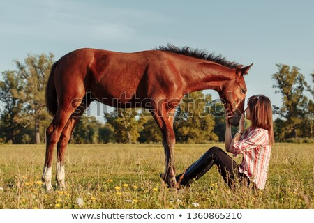 Happy smiling young cowgirl resting at the ranch fence stock photo © deandrobot