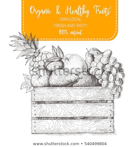 Alimenti freschi etichetta pere illustrazione frutta sfondo Foto d'archivio © bluering