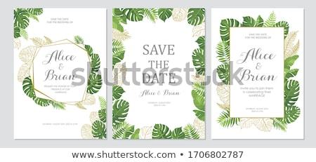 Lege sjabloon bloei plant grens ontwerp Stockfoto © bluering