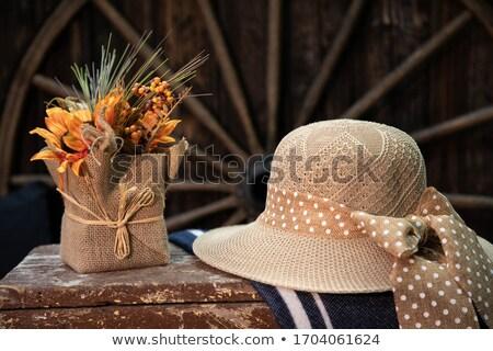 Nő ül vagon kert férfi toló Stock fotó © dash