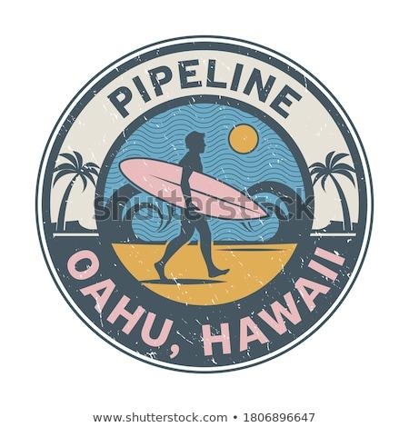 South coast of Oahu, Hawaii Stock photo © dirkr