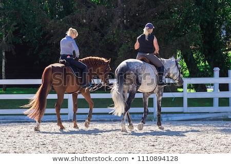 два девочек верхом лошади весело портрет Сток-фото © IS2