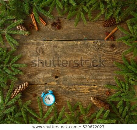 árvore de natal ramo canela azul alarme Foto stock © vlad_star