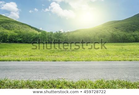 трава дороги пути стремление 3d иллюстрации Элементы Сток-фото © Lightsource