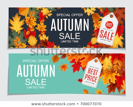 autumn sale design with colorful falling leaves and lettering on red background autumnal vector ill stock photo © articular