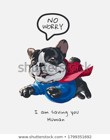 rajz · szuperhős · kutya · felirat · illusztráció · állat - stock fotó © bennerdesign