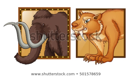 Mammoth and wild tiger on badges Stock photo © colematt