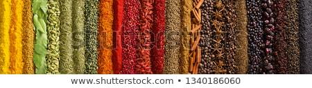 Garlic, seasoning spice. Stock photo © szefei