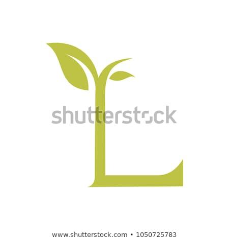letter l leaf icon symbol natural vector stock photo © blaskorizov