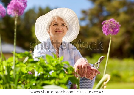 senior woman with garden pruner and allium flowers Stock photo © dolgachov