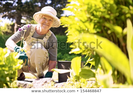 senior woman garden tools and flowers at summer Stock photo © dolgachov