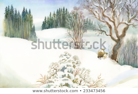 houses made of wood and winter trees forest vector stock photo © robuart