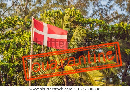 Bandeira Dinamarca fundo palmeiras atravessar azul Foto stock © galitskaya