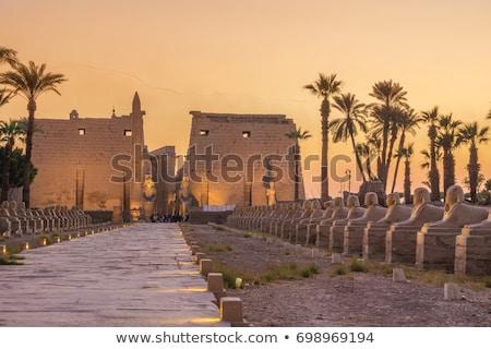 Egyiptom · templom · völgy · Luxor · felirat · ír - stock fotó © givaga