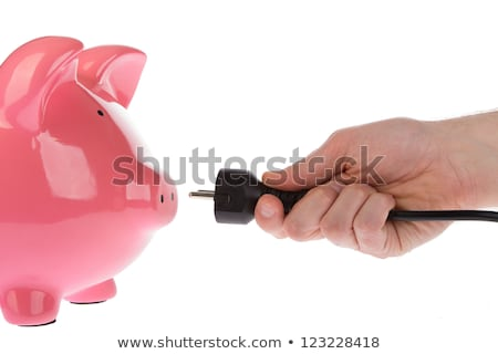 Piggy Bank With Power Plug Stock photo © AndreyPopov