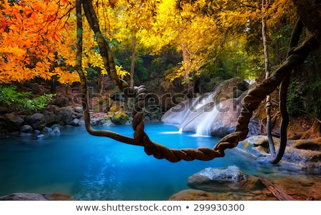 Cascading waterfall through lush rainforest Stock photo © lovleah