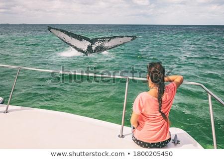 Reise Boot Ausflug Tour Frau touristischen Stock foto © Maridav