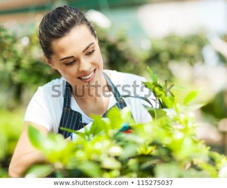 Mulher jovem branco menina mão trabalhar natureza Foto stock © Elnur
