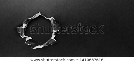szakadt · darabok · papír · csoport · fehér · textúra - stock fotó © cidepix