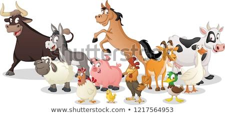happy farm animals cartoon characters group stock photo © izakowski