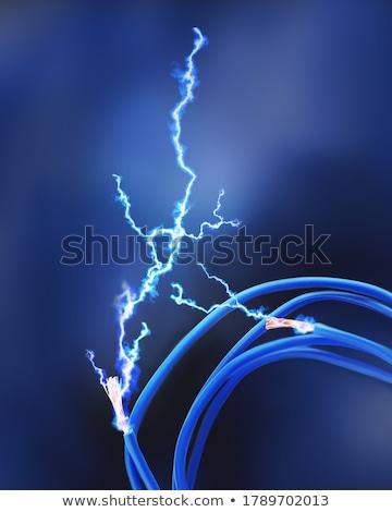 Blau Kabel Computer Ethernet isoliert weiß Stock foto © restyler