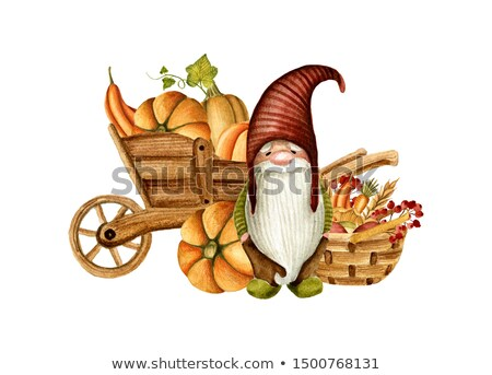 Gnome in Vegetables Stock photo © naffarts