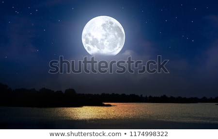 moon night lake landscape stock photo © elwynn