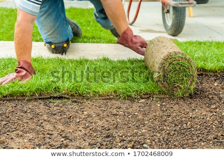 Gardening - Gardener laying sod for the new lawn Stock photo © brebca