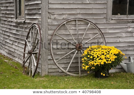 Lean on me (Old barns)  stock photo © Imagecom