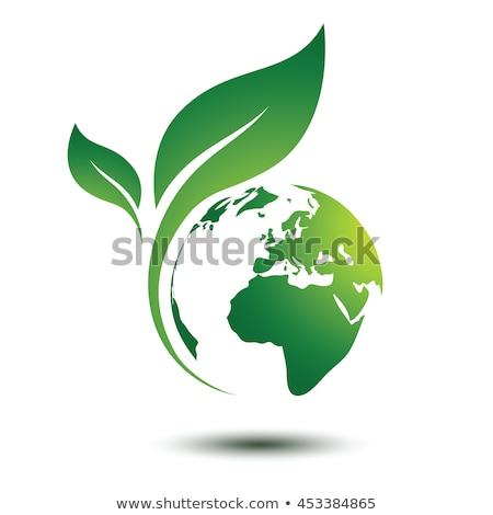 Simge yeşil gezegen 100 doğal ürün Stok fotoğraf © christina_yakovl