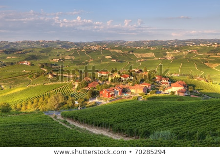 Hills and meadows of Piedmont. Northern Italy. Stock photo © rglinsky77