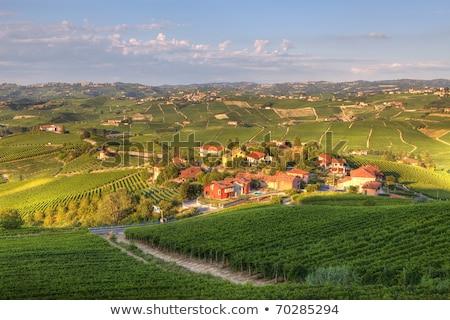 hills · norte · Itália · rural · casas - foto stock © rglinsky77