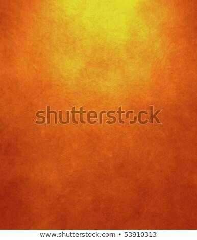 Textura grunge oscuro naranja metal edificio pared Foto stock © cherju